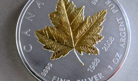 Kanada-Maple-Leaf-1-oz-Silber-vergoldet-Jubilaeum-1988-2008