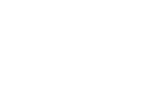 NES-Group-Logo